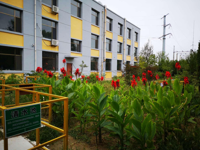 厂区后花园